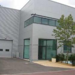 Location Bureau Ivry-sur-Seine 167 m²