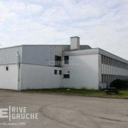Location Terrain Geispolsheim 4500 m²