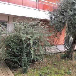 Vente Bureau Toulouse 158 m²
