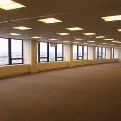 Location Bureau Paris 15ème 3368 m²