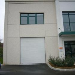 Location Local d'activités Bussy-Saint-Martin 515 m²