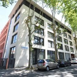 Location Bureau Lyon 9ème 1159 m²