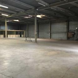 Location Local d'activités Torcy 1302 m²
