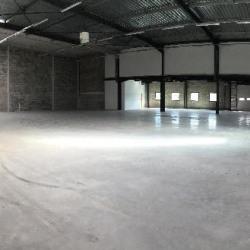 Location Local d'activités Taverny 618 m²