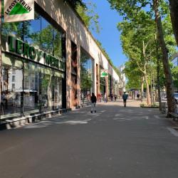 Location Local d'activités Paris 12ème 126 m²