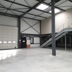 Location Local d'activités Genas 1152 m²