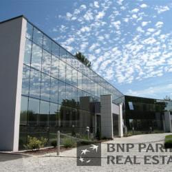 Location Bureau Eckbolsheim 522 m²