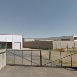 Location Local d'activités Narbonne 270 m²