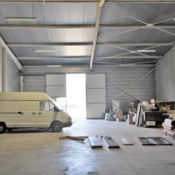 Location Local d'activités Castres 333 m²