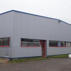 Location Local d'activités Saint-Jean-de-Braye 773 m²