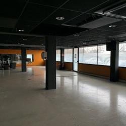 Vente Local commercial Bruges 500 m²
