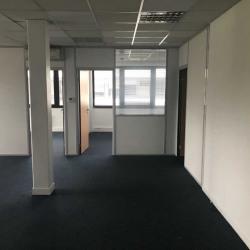 Location Bureau Strasbourg 301 m²