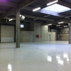 Location Local d'activités Saint-Thibault-des-Vignes 325 m²