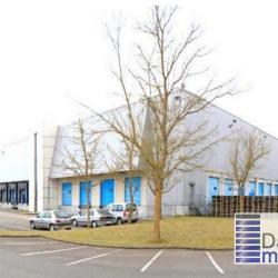 Location Entrepôt Savigny-le-Temple 33374,2 m²