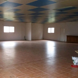 Location Local commercial Fenouillet 450 m²