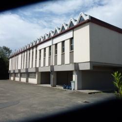 Vente Local d'activités Saint-Cyr-l'École 1600 m²