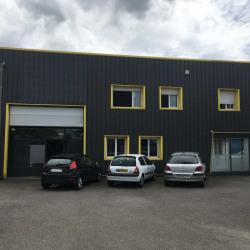 Location Local d'activités Béligneux 1200 m²