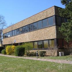 Location Bureau Lingolsheim 312 m²