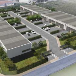 Vente Local d'activités Deyme 3012 m²