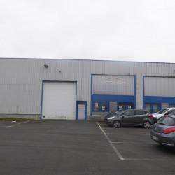Location Local d'activités Seclin 564 m²