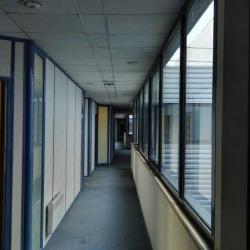 Location Local d'activités Tremblay-en-France 6690 m²