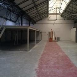 Location Local d'activités Alfortville 485 m²