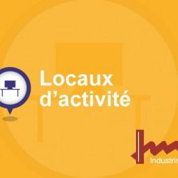 Vente Local d'activités Belin-Béliet 4500 m²