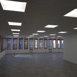 Location Bureau Lyon 7ème 1450 m²