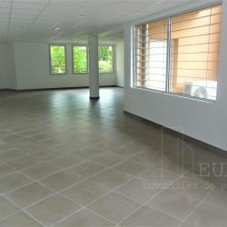 Vente Local commercial Toulouse 267,5 m²