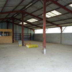 Location Entrepôt Charnay-lès-Mâcon 236 m²