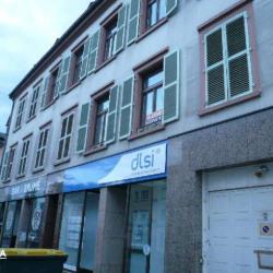 Location Local commercial Sarreguemines (57200)