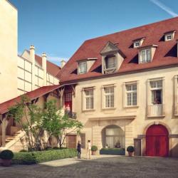Vente Local commercial Colmar 220,39 m²