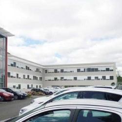 Location Bureau Canéjan 3444 m²
