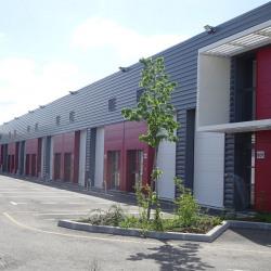 Location Local d'activités Plaisance-du-Touch (31830)