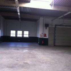 Location Local d'activités Lognes 385 m²