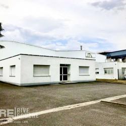 Location Local d'activités Vendenheim (67550)