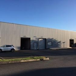Location Entrepôt Poitiers 525 m²