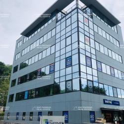 Location Bureau Besançon 295 m²