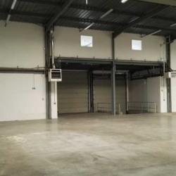 Location Entrepôt Le Thillay 331 m²