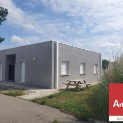 Location Local d'activités Pierrelatte 260 m²