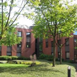 Vente Bureau Montigny-le-Bretonneux 428 m²