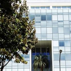 Location Bureau Marseille 8ème 300 m²