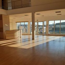 Location Local d'activités Colmar 408 m²