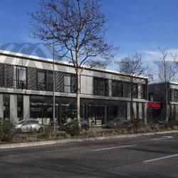 Vente Bureau Saint-Priest (69800)