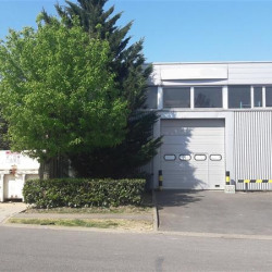 Location Local d'activités Sucy-en-Brie 519 m²