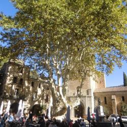 Vente Local d'activités Montpellier 420 m²