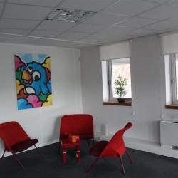 Vente Bureau Lyon 5ème 361 m²
