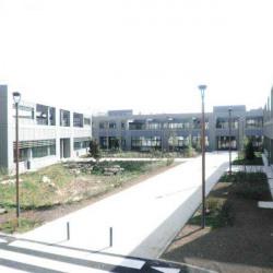 Location Local d'activités Bagneux 242 m²