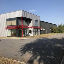 Location Local d'activités Rouvroy 1050 m²