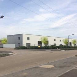 Vente Local d'activités Saint-Apollinaire 200 m²